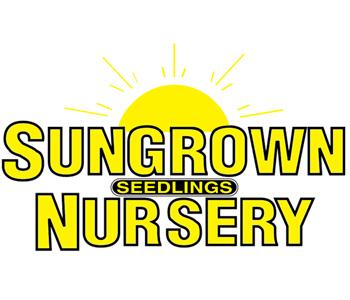 Sungrown Seedling Nursery